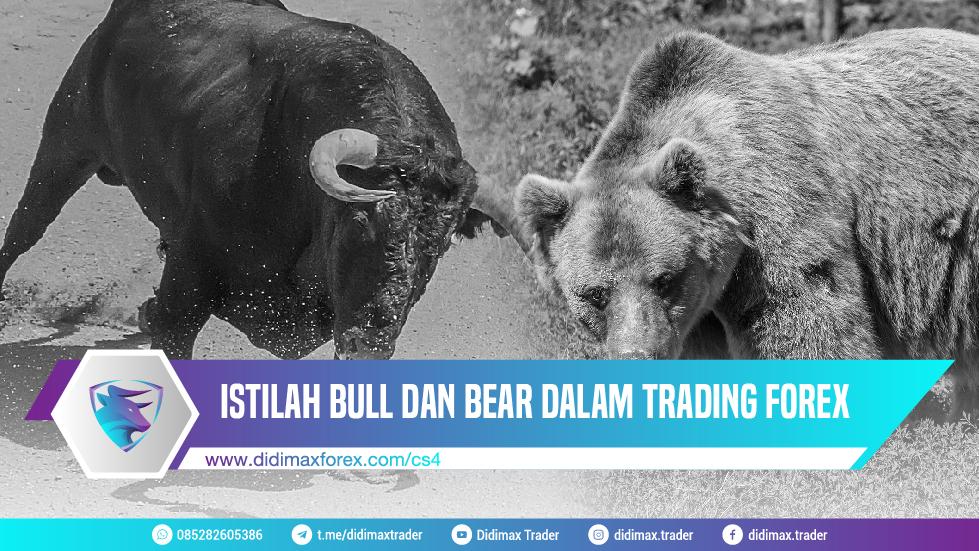 ISTILAH BULL DAN BEAR DALAM TRADING FOREX